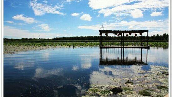 那木斯萊濕地