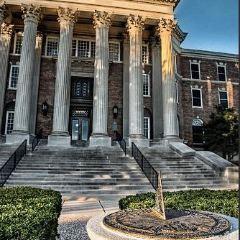 Southern Methodist University User Photo
