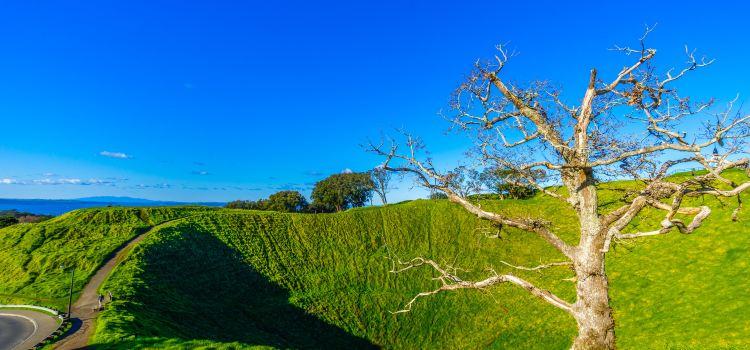 Mount Eden1