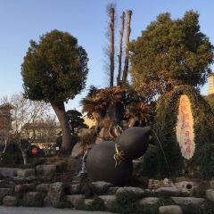 항저우동방문화원 여행 사진