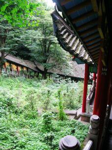 肉身宝殿-九华山-12861188