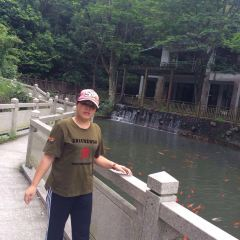虎門石洞森林公園用戶圖片