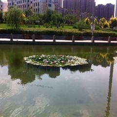 浜湖河のユーザー投稿写真