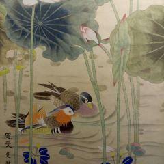鶴壁市博物館用戶圖片