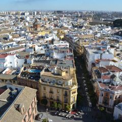 Torre Giralda User Photo