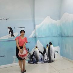 Chiangmai zoo User Photo