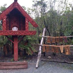 Whakarewarewa Thermal Village User Photo