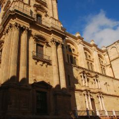 La Santa Iglesia Catedral Basílica de la Encarnacion User Photo