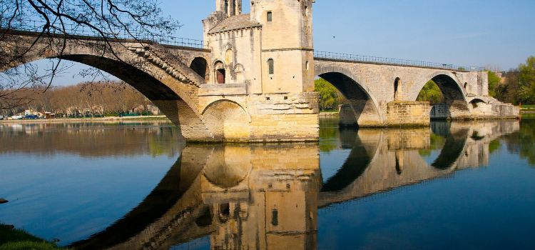 Pont Saint-Benezet (Pont d'Avignon)3