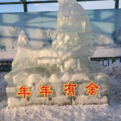 佳木斯冰雪大世界用戶圖片