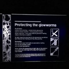 Springbrook Glow Worm Research Centre User Photo