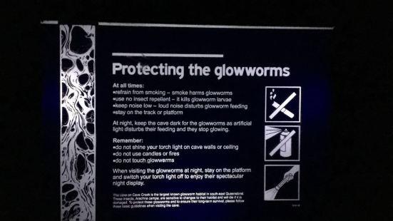 Springbrook Glow Worm Research Centre