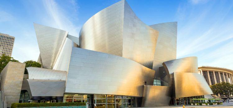Walt Disney Concert Hall1