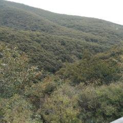 少室山景區用戶圖片