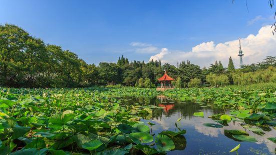 중산 공원