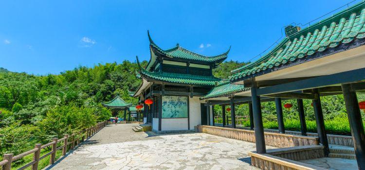 이싱 주하이(의흥 죽해)1