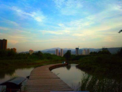 Yintan Wetland Park