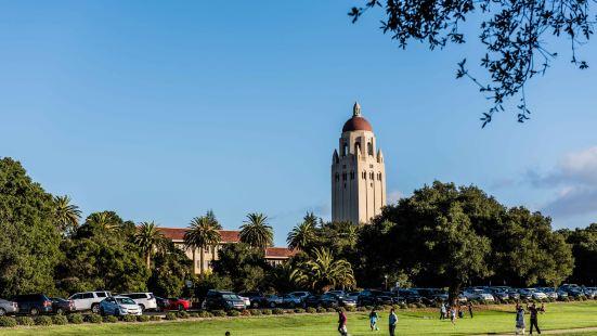 스탠포드 대학
