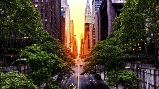 曼哈頓懸日