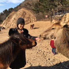 Badaling Wildlife World User Photo