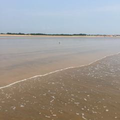 Rizhao Seaside National Forest Park User Photo