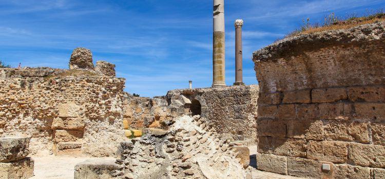 迦太基古城遺址3