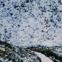 八台山用戶圖片