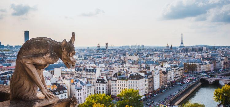 파리 노트르담 대성당2