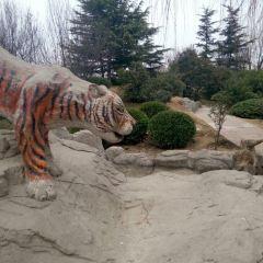 中國綠化博覽園用戶圖片