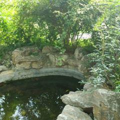 지난 식물원 여행 사진