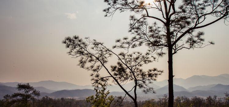 Pai Canyon3