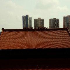 化成禪寺用戶圖片