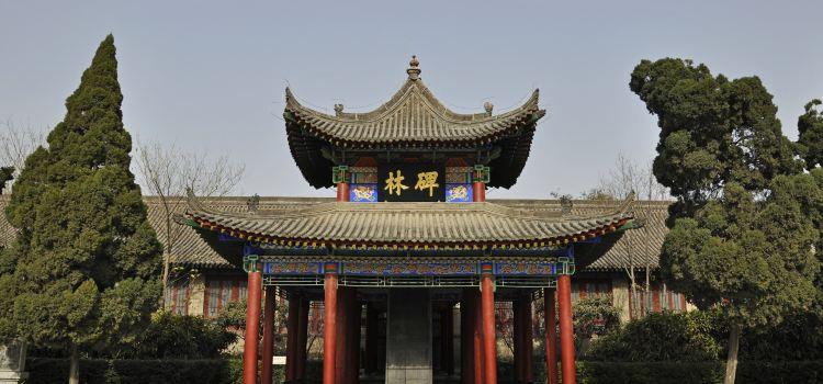 시안 베이린 박물관(서안 비림 박물관)1