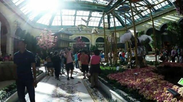 Bellagio Conservatory and Botanical Gardens