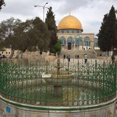 Temple Mount User Photo