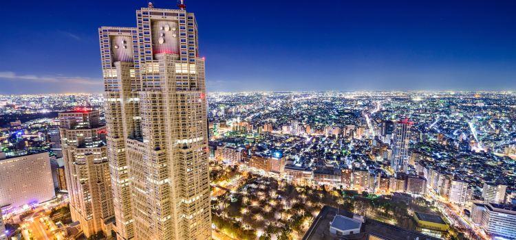 東京都廳展望台2