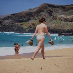 桑迪海灘公園用戶圖片