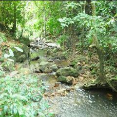 Kathu Waterfall User Photo