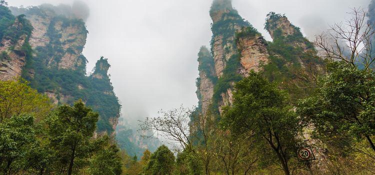 張家界国家森林公園2