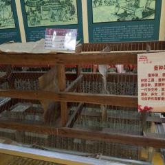 Nanguo Sidu Silk Museum User Photo