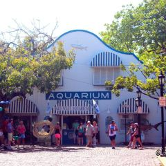 Key West Aquarium User Photo