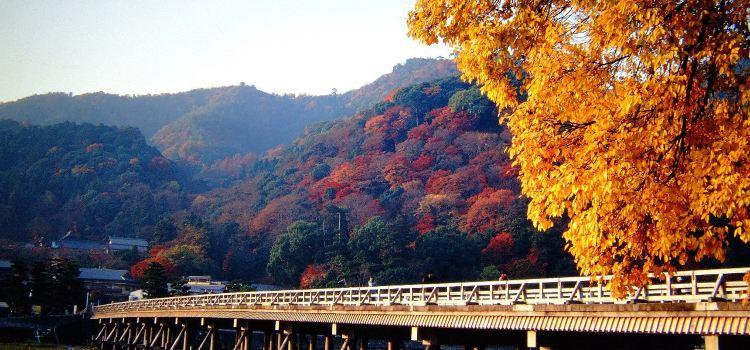 Togetsukyo Bridge2