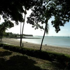 Airlie Beach Lagoon User Photo