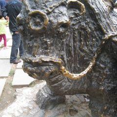 Shaanxi Folklore Grand View Garden (Minsu Daguanyuan) User Photo