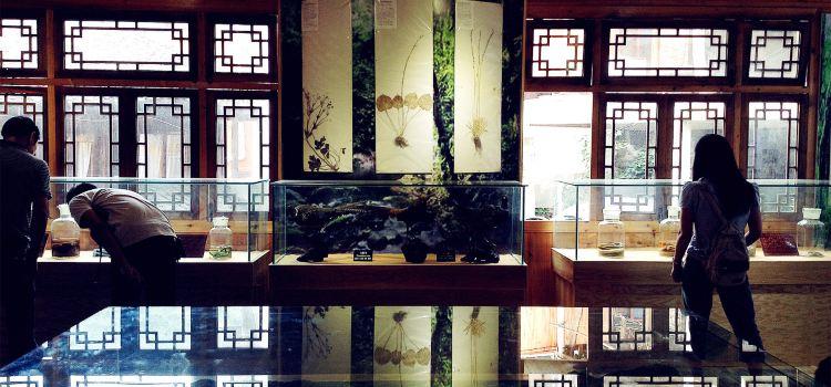 Xijiang Miao Museum1