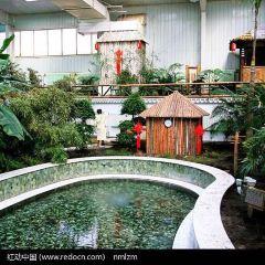 阿爾山溫泉用戶圖片