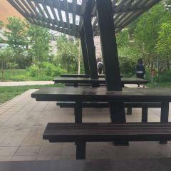 Beijing Foreign Studies University User Photo