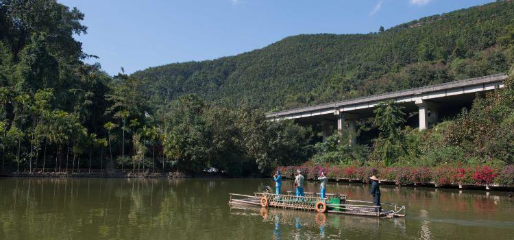 Xishuangbanna Primeval Forest Park2