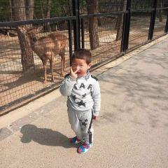 淮安動物園用戶圖片