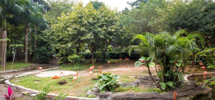 Nanning Zoo3